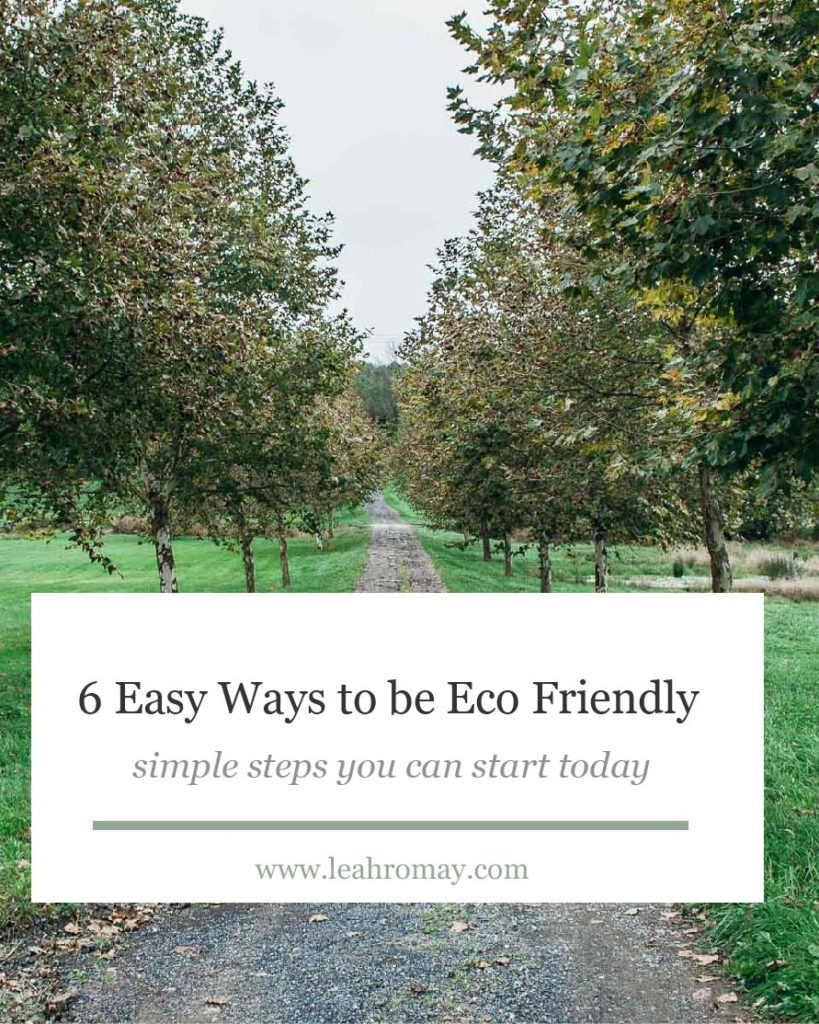 6 easy ways to be more ec friendly with actionable steps you can start today!